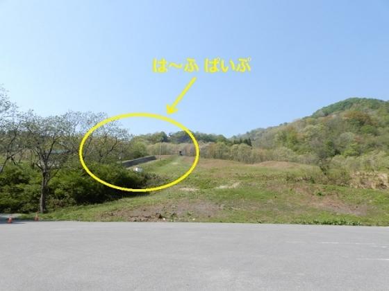 DSCN5314blog.jpg
