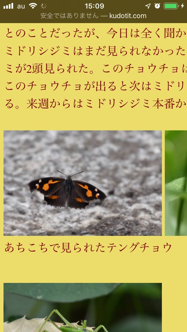 S__30277662.jpg