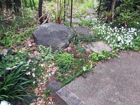 garden1_041519