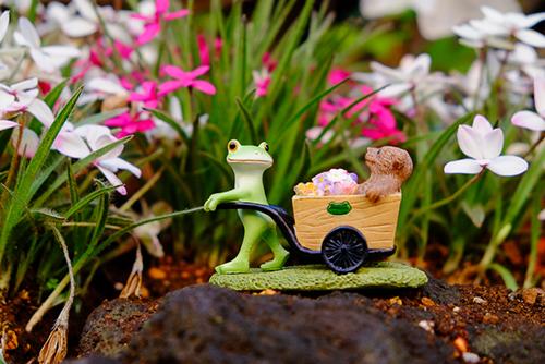 ツバキアキラが撮ったカエルのコポー。花を届けに来て、綺麗に花を咲かせたクマくんを褒めるコポタロウ。