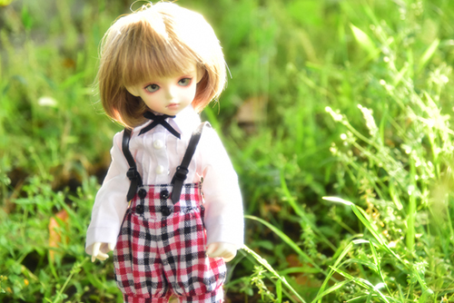 ROSEN LIED、Tuesday's child、通称・火曜子のチェルシー。温存していたカボチャパンツが、いまいち似合っていないのは、どういうことだ?