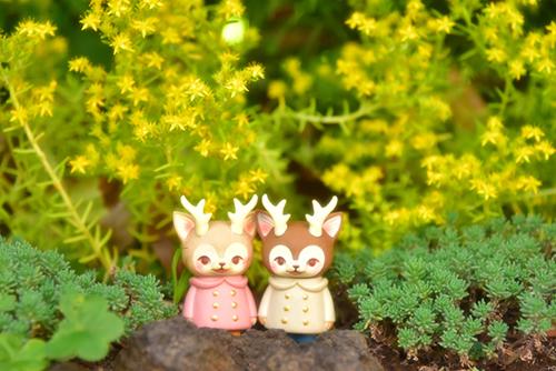 ツバキアキラが撮った、VAG・MORRIS、通称・つのねこ。つぶつぶ・キラキラしているお花の前で嬉しそうな、つのねこ達。