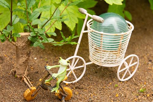 ツバキアキラが撮ったカエルのコポー。背の高い自転車を見つけたコポタロウ。