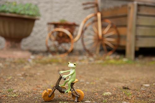 ツバキアキラが撮ったカエルのコポー。錆びた自転車を見つけたコポタロウ。
