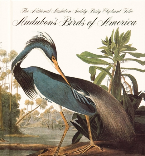 Audubon_Birds_of_America.jpg