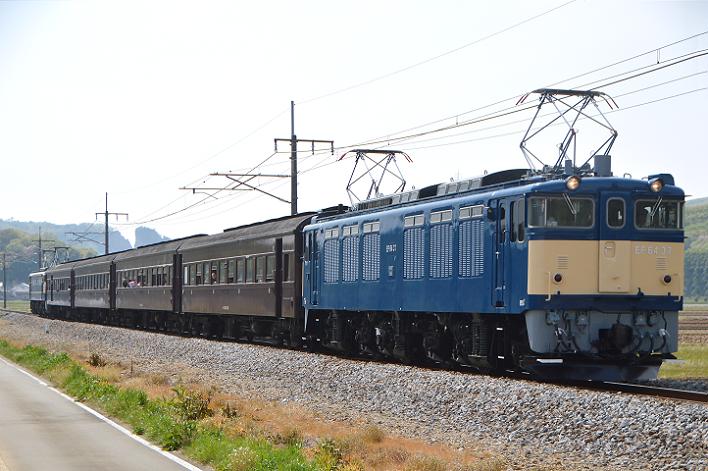 DSC_4965-2-2