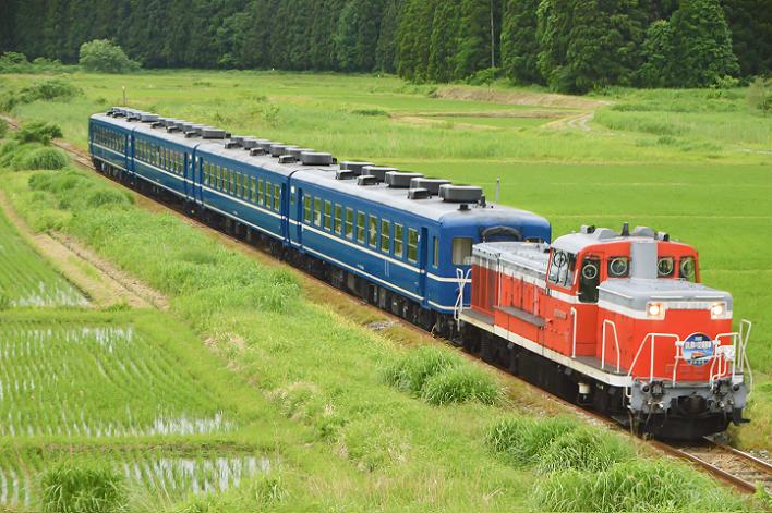 DSC_5492 190615 野沢