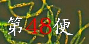 uc48mokuji.jpg