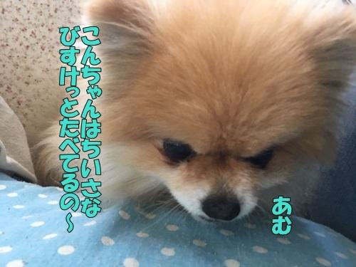 image519053001.jpeg