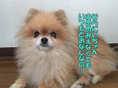 image619041102.jpeg