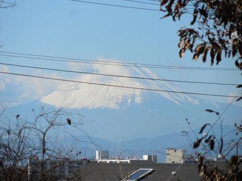 まさかりが淵市民の森の殿山広場から見た富士山@横浜市戸塚区c