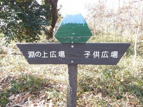 まさかりが淵市民の森の殿山広場から見た富士山@横浜市戸塚区a