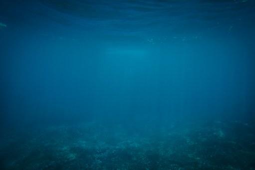 deep sea58753