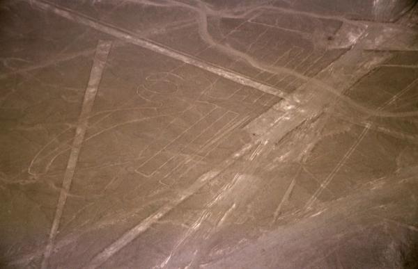 800px-Nazca-lineas-pelicano-c01.jpg