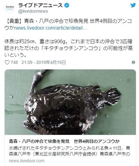 【東北】地球上で3匹しか確認されていない「キタチョウチンアンコウ」が青森県で水揚げされる