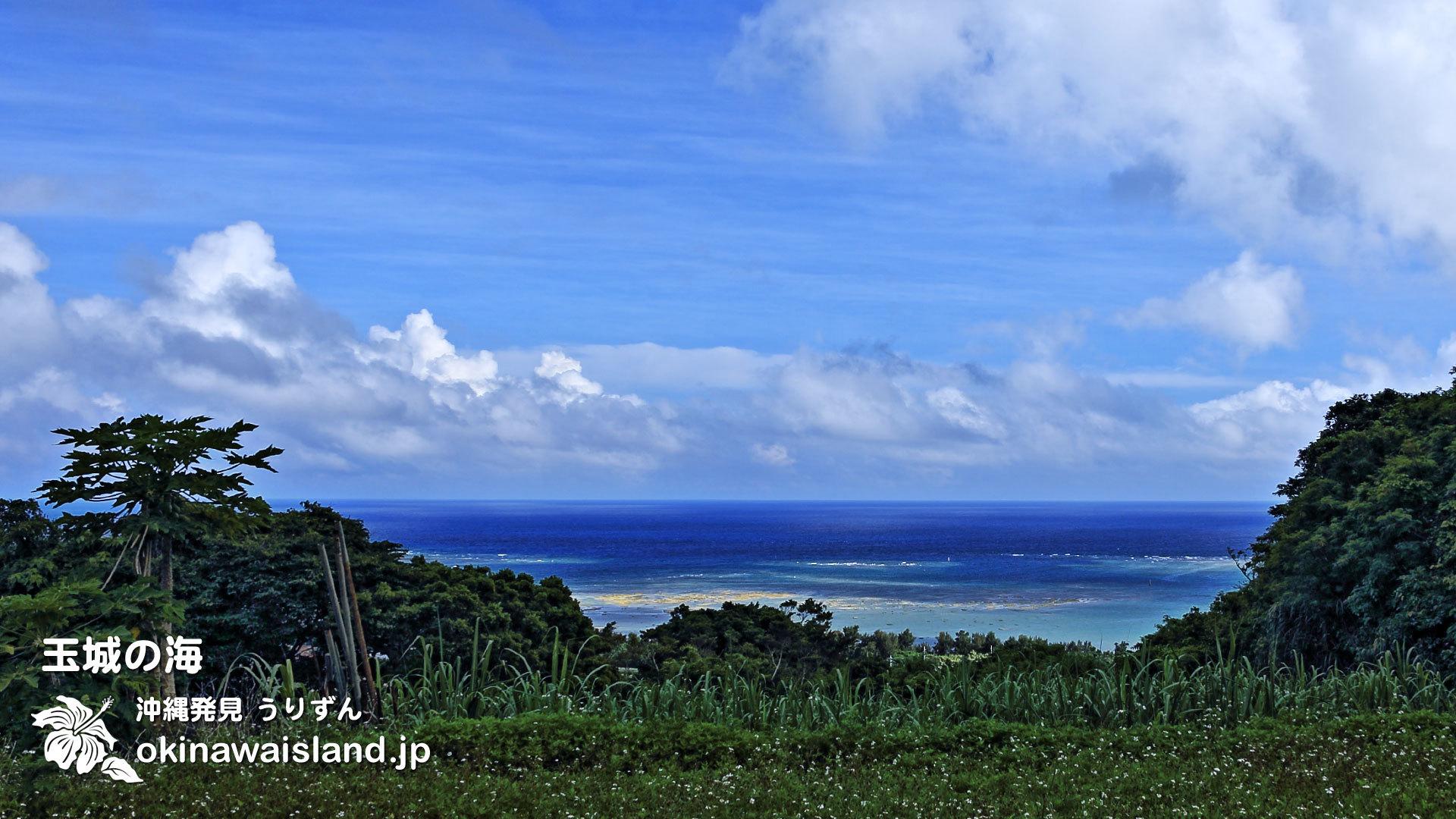 沖縄の風景 壁紙 デスクトップカレンダー 無料ダウンロード 沖縄の海