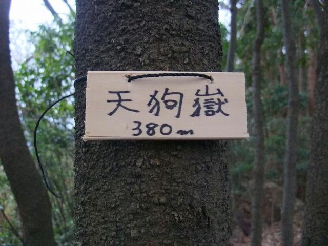 s9930031.jpg