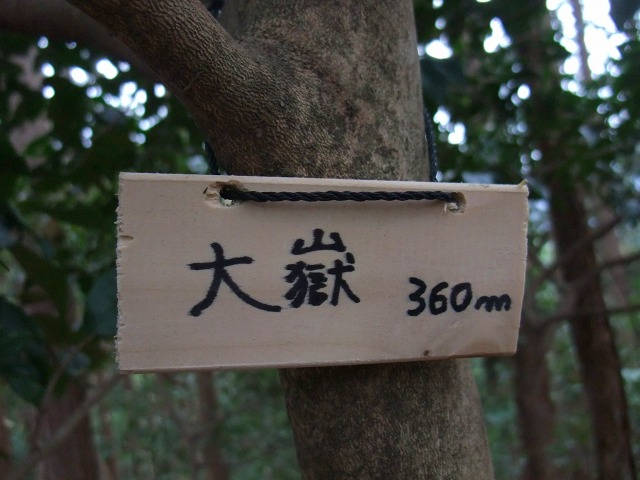 s9930052.jpg