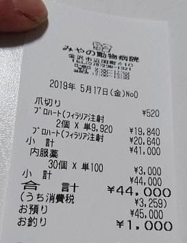 DSC_2994_2019051901173518b.jpg