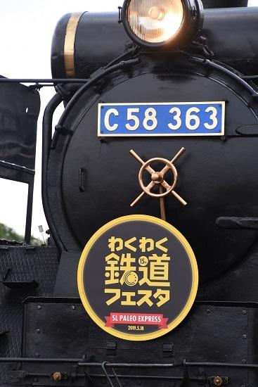 DSC_1383-1.jpg