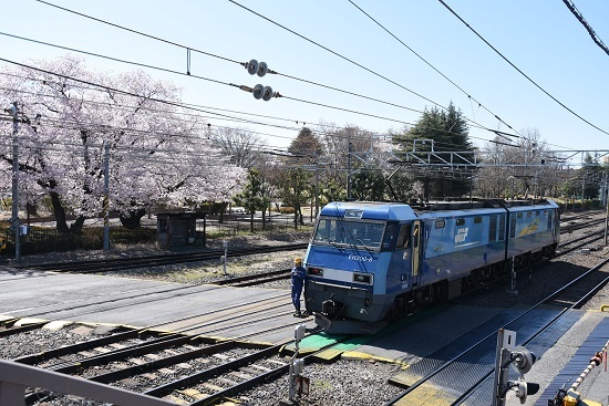 EH200-8号機 桜と