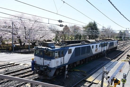 南松本にて桜とEF64