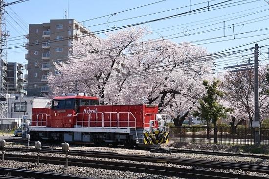 桜とHD300-9号機