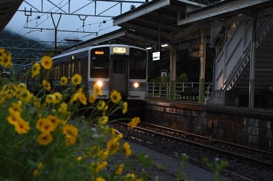 小野駅にて花と絡めての「ほたる祭り号」