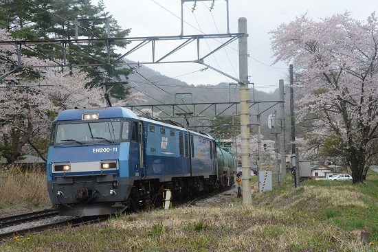 冠着駅の桜と2084レ
