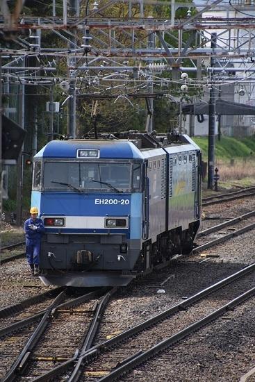 DSC_9261-1.jpg