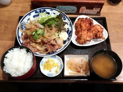 20190513IWAMA_syougayakikaraage.jpg