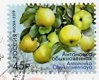 切手48  ロシア
