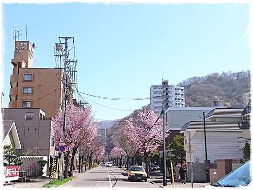 ヤシオDSC_7682