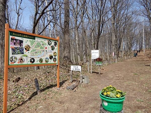 男山自然公園