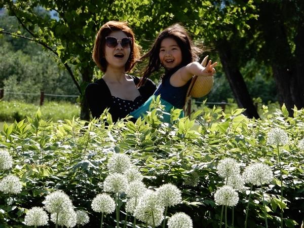 北彩都ガーデン川のボーダー花壇