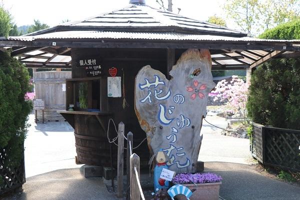 2019.05.20 花のじゅうたん①-1