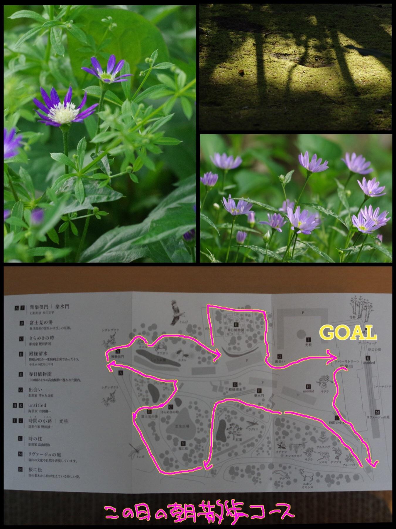 富山 リバーリトリート雅楽倶 庭園 散歩コース 春日植物園