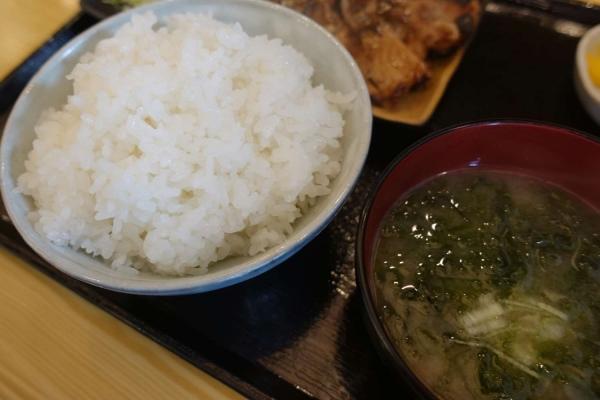炭火豚丼 豚元