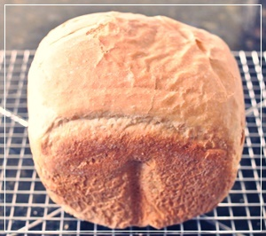 HBで食パン