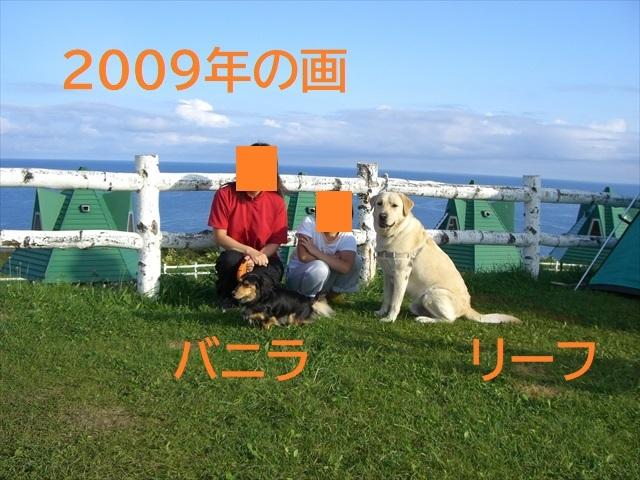 CIMG3960_PPP.jpg