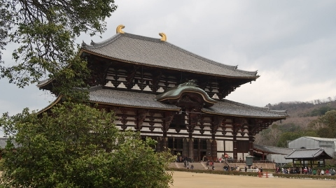 IMG_8598大仏殿(金堂) (480x269)