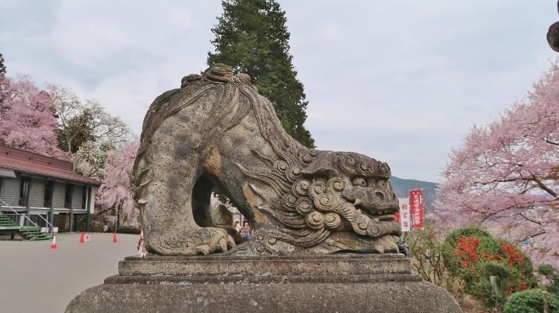 烏帽子山10 (800x449)