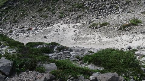 表砂漠 (480x269)