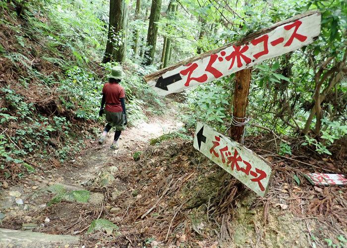 2019,6,16鷹取山-7