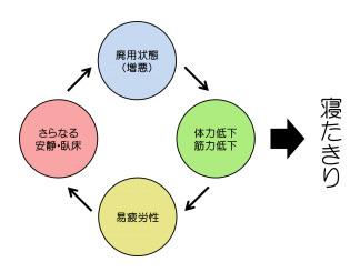 xxxs (1)