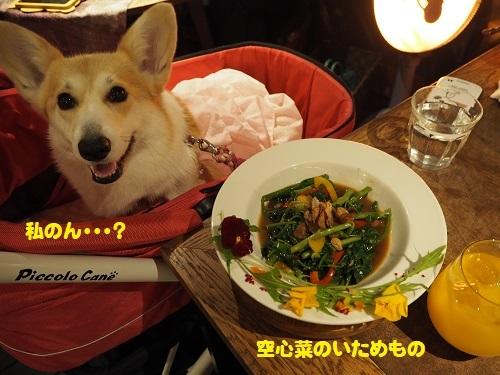 12空心菜