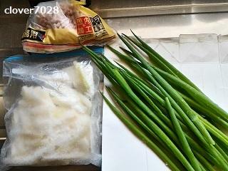 20190523_114348_昼食の材料_大根、ネギ