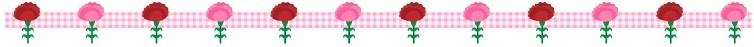 carnation_check_line_1541.jpg