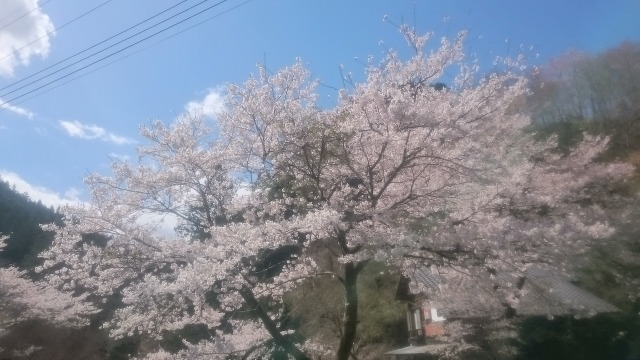 20190415北川