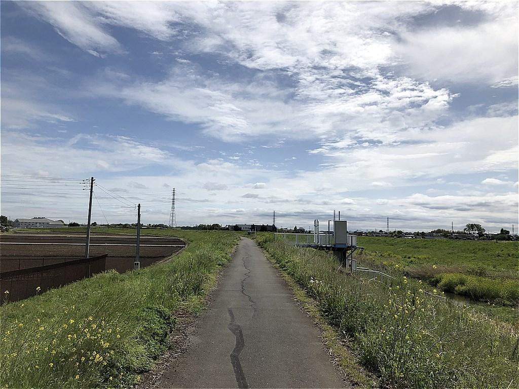 20190501_川越ラン (02)